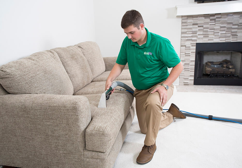furniture and upholstery cleaning in murray