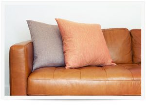leather furniture and upholstery cleaning in murray