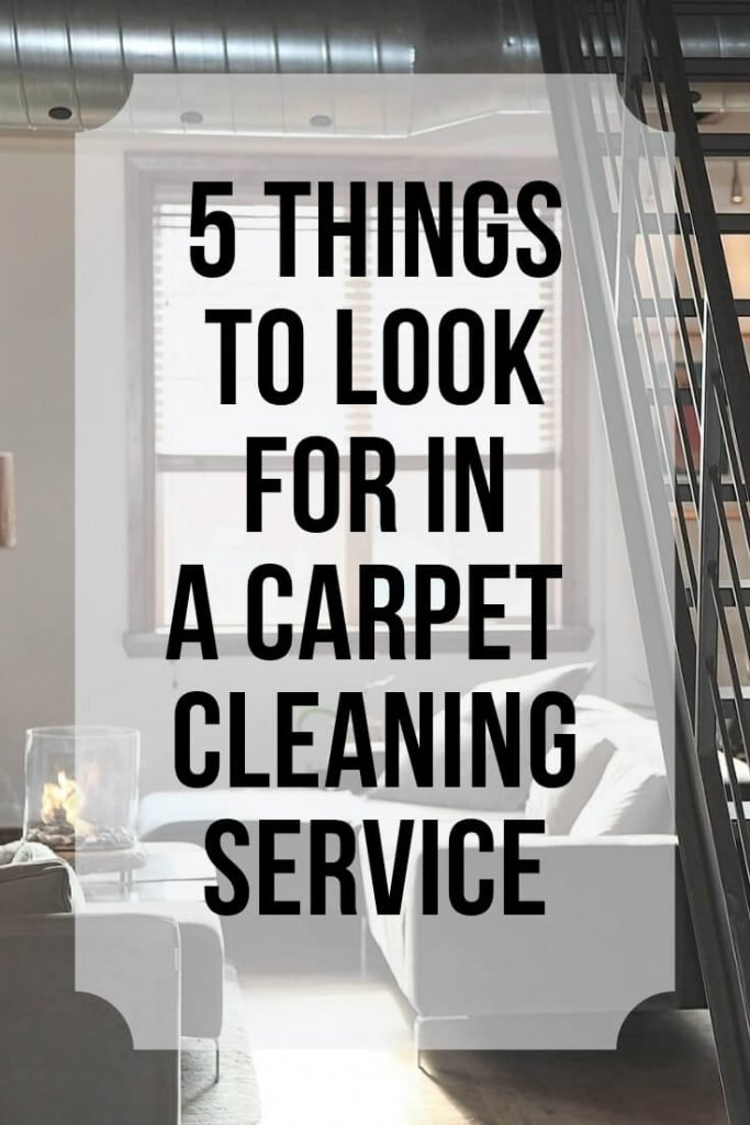 carpet cleaner must haves