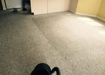 carpet cleaning in progress in salt lake city