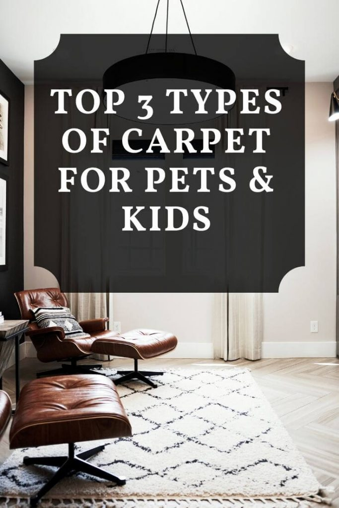top 3 types of carpet for pets and kids graphic