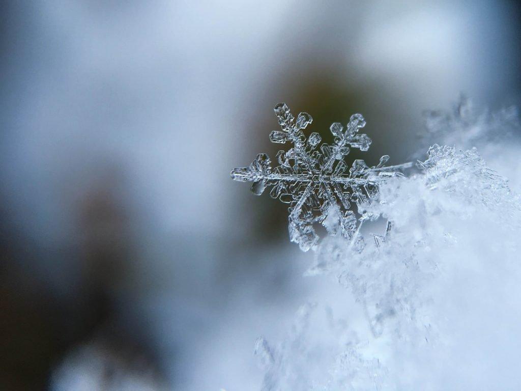 closeup of snowflake