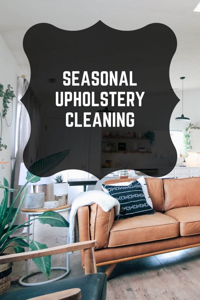upholstery cleaning graphic