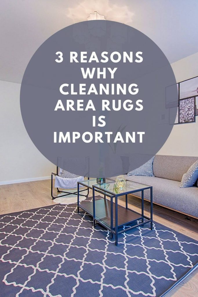 3 reasons why cleaning area rugs is important graphic