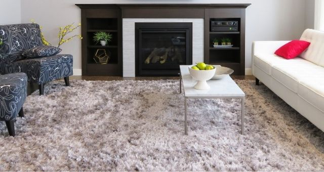 What Things Are Hiding in Your Carpet?