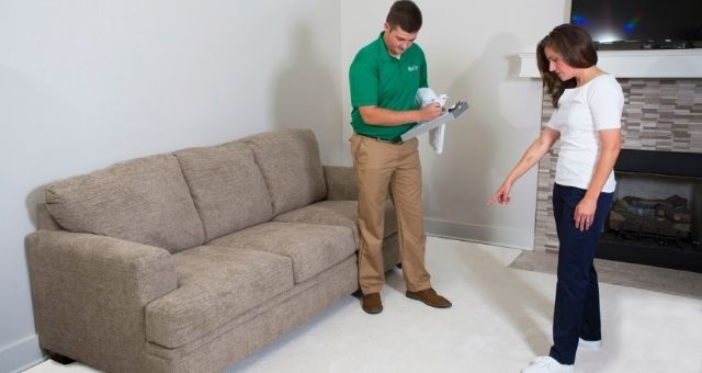 How to Choose the Best Carpet Cleaner for Your Needs